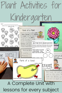 Plant Activities for Kindergarten in Every Subject
