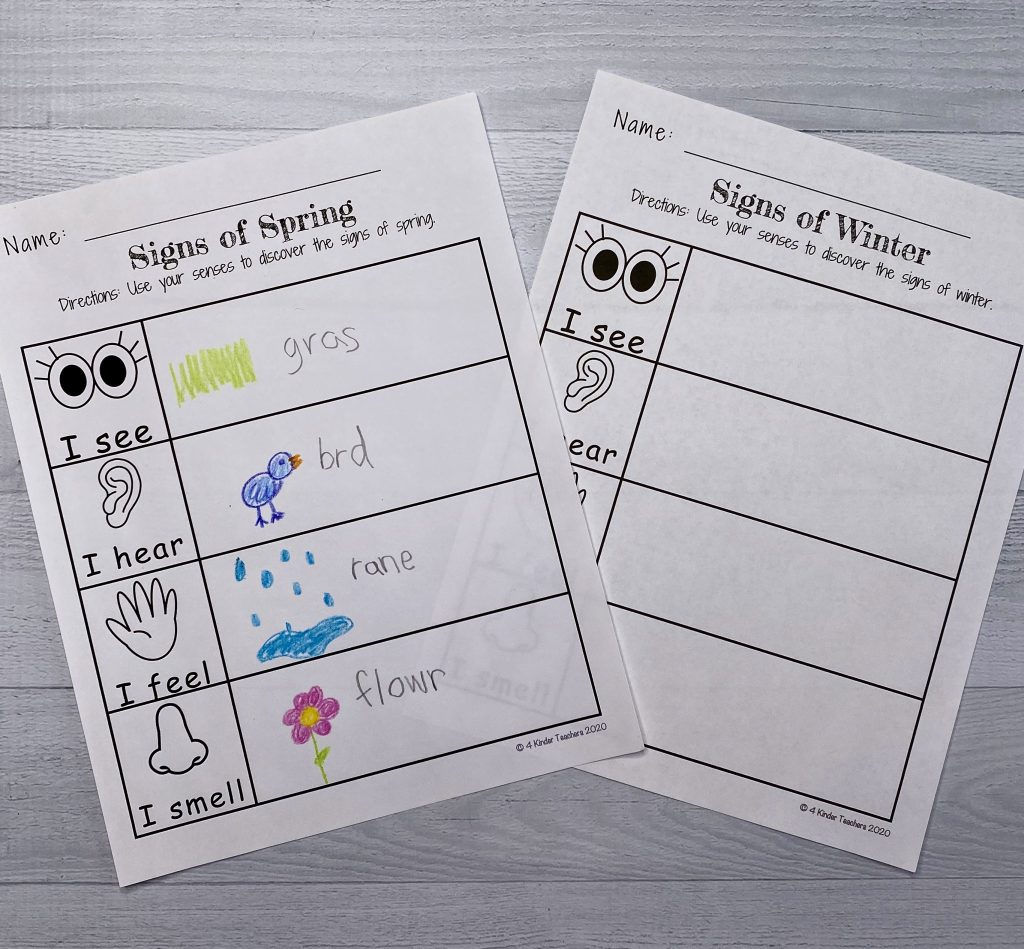 kindergarten-free-worksheets-science