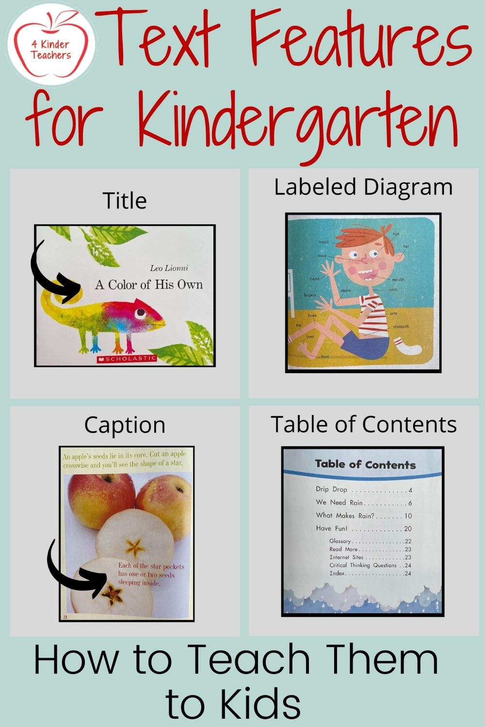 What are Text Features? How to Teach Them to Kids