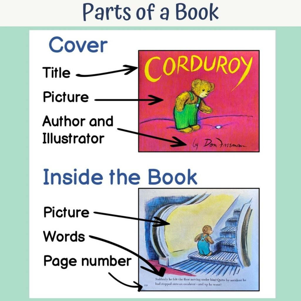 parts of a book anchor chart for kindergarten